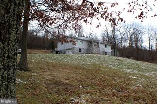 Farm And Agriculture for sale in 2823 LOWER TIMBER RIDGE ROAD, Seneca Rocks, WV, 26884