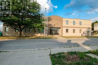 Multi-family Home for sale in 36 WINDSOR AVENUE, Windsor, Ontario