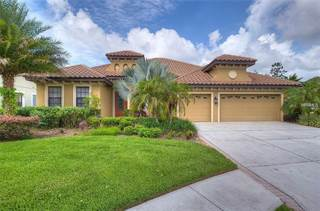 Single Family for sale in 20110 POND SPRING WAY, Tampa, FL, 33647