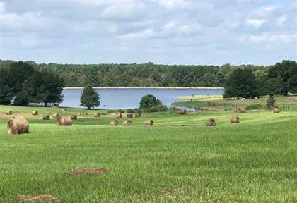 Lots And Land for sale in 0 CEDAR HILL RD PARCEL 4, Flora, MS, 39071
