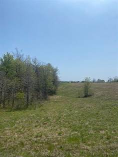 Lots And Land for sale in Tbd Us Highway 63, Willow Springs, MO, 65793