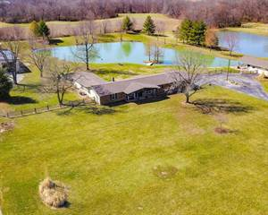 Residential Property for sale in 8729 Old Moro Rd., Dorsey, IL, 62021
