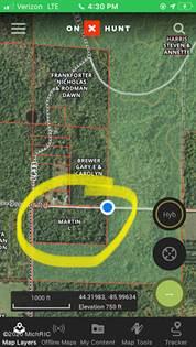 Lots And Land for sale in VL Swihart Road, Brethren, MI, 49619