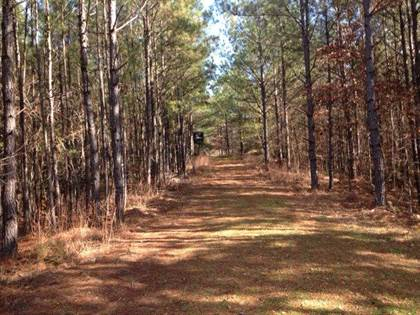 Lots And Land for sale in 000 Smith Rd, Woodville, MS, 39633
