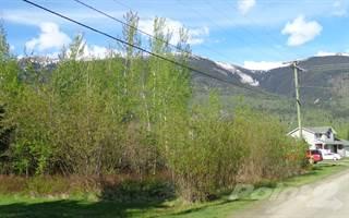 Land for sale in 625 King Street, McBride, British Columbia, V0J 2E0