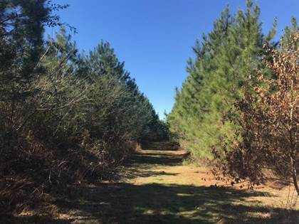 Lots And Land for sale in 000 Airport Road, Crosby, MS, 39633