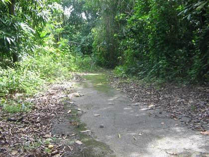 Lots And Land for sale in Finca 2.84 cuerdas, Bo. Miradero Mayagüez, Mayaguez, PR, 00682