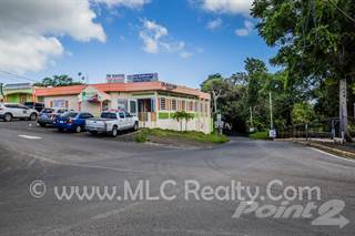 Comm/Ind for rent in Bo. San Antonio, Quebradillas COMMERCIAL SPACE, Greater Avon Park, FL, 33825