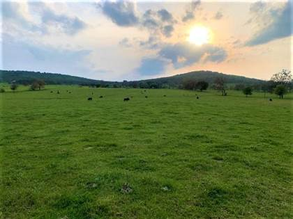 Lots And Land for sale in 15965 Ditmars  RD, Prairie Grove, AR, 72753