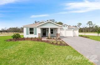 Single Family for sale in 705 Primrose Willow Way, Apopka, FL, 32712
