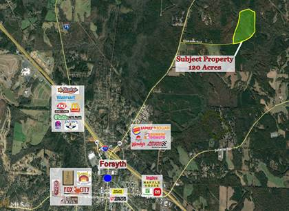 Farm And Agriculture for sale in 0 N Highway 83, Forsyth, GA, 31029