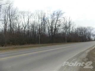Land for sale in PT LT 23 RIDGE Road, Fort Erie, Ontario