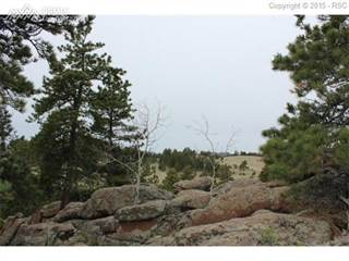 Land for sale in 1347 County 12 Road, Florissant, CO, 80816
