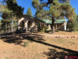 Single Family for sale in 146 Lakewood Street, Pagosa Springs, CO, 81147