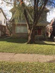 Single Family for sale in 477 CHALMERS Street, Detroit, MI, 48215