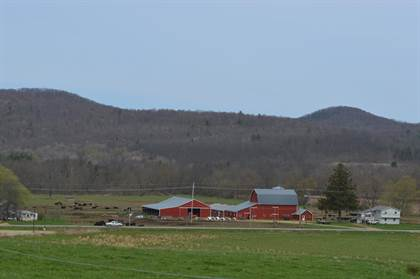 Farm And Agriculture for sale in 1097 Route 44, Shinglehouse, PA, 16748