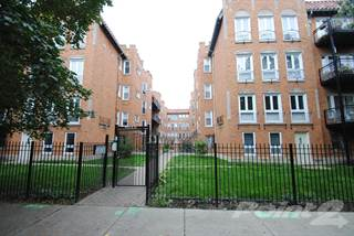 Apartment for rent in 1640 W Greenleaf Ave Unit 3S - 2/2 900 sqft, Chicago, IL, 60626