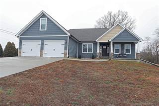 Single Family for sale in 115 Lakeview Crossing, Cape Girardeau, MO, 63701