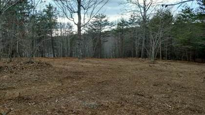 Farm And Agriculture for sale in LOT 44 Garrison Ridge, Pittsville, VA, 24139