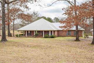 Single Family for sale in 1660 MISTY LN, Terry, MS, 39170