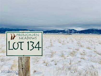 Lots And Land for sale in 134 Browntine Lane, Ennis, MT, 59729