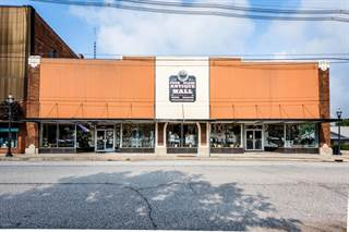 Comm/Ind for sale in 218 N 2nd Street, Niles, MI, 49120