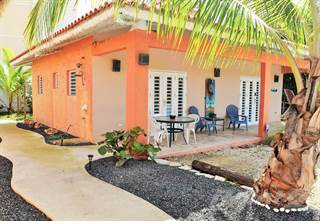 Other Real Estate for rent in Carr. 4466 int., Isabela, PR, 00662