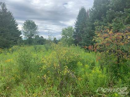 Residential Property for sale in 198 Drive-In Road, Laurentian Valley, Ontario
