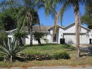 Single Family for sale in 1148 MONTEAGLE CIRCLE, Apopka, FL, 32712