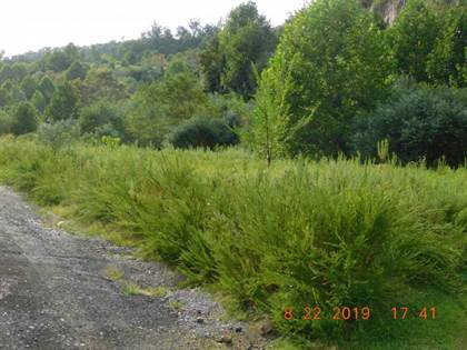 Lots And Land for sale in 0 Colley Shopping Center, Clintwood, VA, 24228