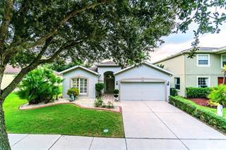 Photo of 19126 MEADOW PINE DRIVE, Tampa, FL