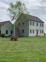 Single Family en venta en 15243 Tiffany Road, Opdyke, IL, 62872