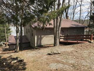 Single Family for sale in 249 Lakeshore Dr, Goreville, IL, 62939