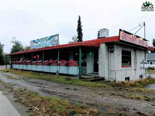 Comm/Ind for sale in 1019 COLLEGE ROAD, Fairbanks, AK, 99701