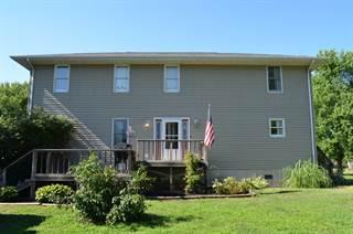 Single Family for sale in 437 Meadow Street, Niota, IL, 62358