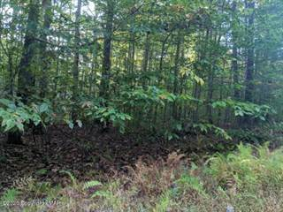 Land for sale in 3 MILL CREEK RD, Cresco, PA, 18326