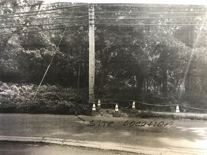 Lots And Land for sale in 0 Minerva Avenue, Staten Island, NY, 10307