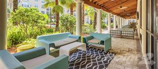 Apartment for rent in Post SoHo Square, Tampa, FL, 33606