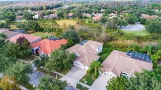 Single Family for sale in 10264 ESTUARY DRIVE, Tampa, FL, 33647