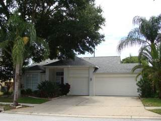 Single Family for rent in 2665 ASTER DRIVE, Palm Harbor, FL, 34684