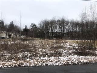 Land for sale in Lot B Division St, Hughestown, PA, 18640