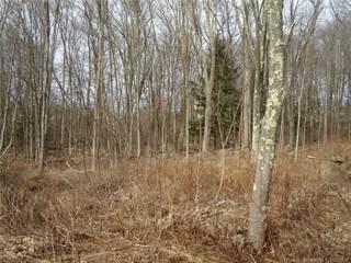 Land for sale in 660 Torringford Street, Torrington, CT, 06790