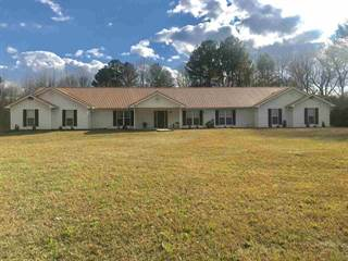 Single Family for sale in 13807 HIGHWAY 489 NONE, Decatur, MS, 39327
