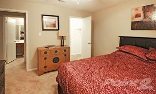 Apartment for rent in The Palms - 2 Bedroom 1 Bath PR, Gulfport, MS, 39503