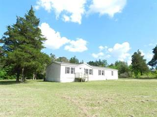 Single Family for sale in 126 COUNTY ROAD 170, Houston, MS, 38851