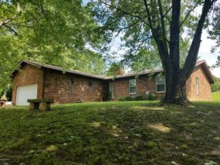 Single Family for sale in 2325 Shake Rag Road, Dongola, IL, 62926