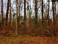 Photo of Lot 8 Kemper Road, 28443, Pender county, NC