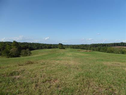 Lots And Land for sale in 0 STANDIFORD RD, Union Hall, VA, 24176