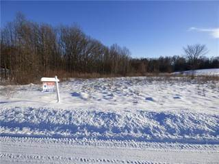 Land for sale in 275 Coyote Run, Rose Township, MI, 48442