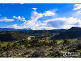 Land for sale in Simoncrest Dr, Livermore, CO, 80536